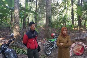 Dinas Kehutanan NTB Minta Masyarakat Laporkan Polhut Pungli
