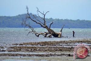 Moyo Dan Satonda Layak Jadi Taman Nasional