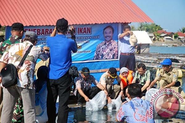 KKP Tebar 33.700 Ekor Benih Ikan Laut di Lombok Timur