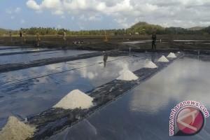 7.441 Hektare Lahan Garam NTB Belum Termanfaatkan
