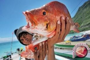 NTB Minta KKP Bangun Gudang Pembekuan Ikan dan Pabrik Es
