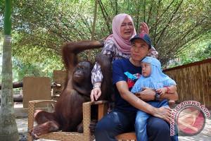 Gubernur: Taman Gajah Sesuai Konsep Pariwisata NTB