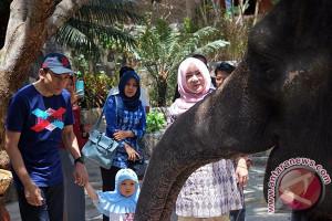 Investor Berencana Bangun Taman Satwa Laut Lombok
