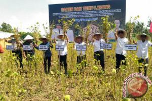 BPTP NTB Dorong Petani Terapkan Teknologi PTT Kedelai