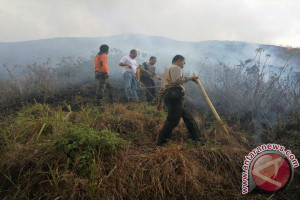 Polisi Selidiki Penyebab Kebakaran Hutan Gunung Rinjani