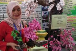 profil - Srikandi pejuang kebersihan dari Kota Tua Ampenan