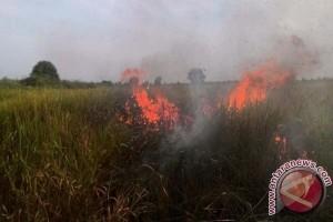 Lima Titik Panas Sebabkan Kebakaran di NTT