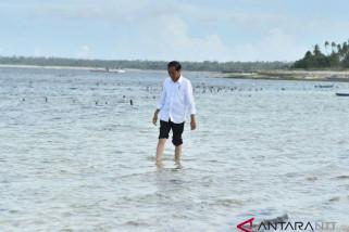 Cawapres Jokowi sebaiknya berlatar belakang hukum