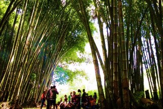 Ngada jadi pusat unggulan program 1000 desa bambu