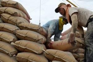 Kabag Perekonomian: penurunan harga semen di Jayawijaya bukan karena subsidi