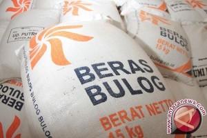 Bulog Merauke serap 30 persen beras petani