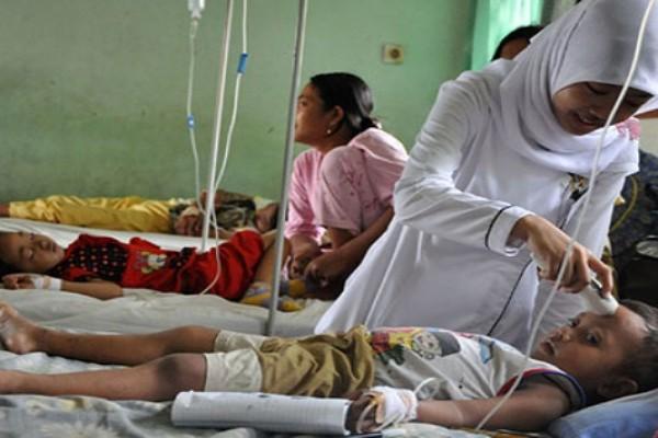 Dinkes Kota Jayapura catat 37 kasus DBD