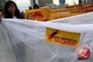 Dinkes Jayapura segera distribusi kelambu antimalaria