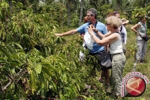 Mengangkat potensi perkebunan rakyat Papua