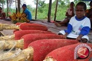 Narapidana Lapas Wamena produksi minyak buah merah