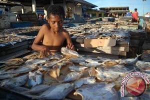 Pelni dorong pengusaha kirim ikan ke Jawa