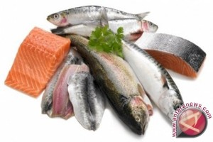 Konsumsi ikan  warga Biak melebihi kebutuhan nasional