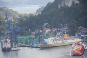 BPS: sektor non migas dominasi impor Papua