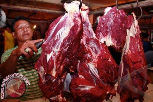 Distanak Biak siapkan 10 ton daging sapi untuk kebutuhan Lebaran