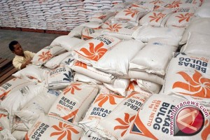 Bulog dukung ekspor beras Merauke ke PNG
