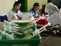 47 kasus DBD di Papua