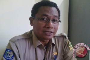 Dinkes Papua gunakan sistem puskesmas satelit untuk pemeriksaan TB