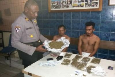 Polsek KPL Jayapura tangkap dua pengedar ganja