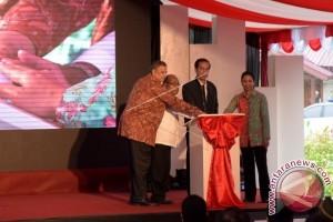 Presiden minta pembangunan infrastruktur kelistrikan Papua selesai 2019