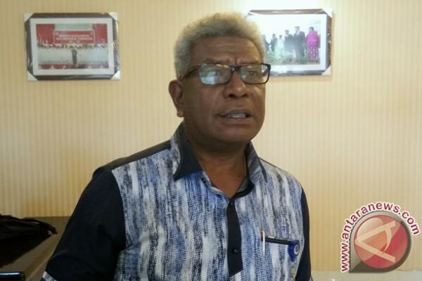 Mimika harapkan Presiden percepat pembangunan bandara dan pelabuhan