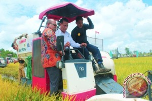 Mentan dan Gubernur Papua di lahan sawah Merauke