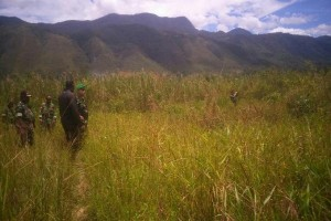 Pemkab Jayawijaya ajak sarjana kembangkan potensi pertanian