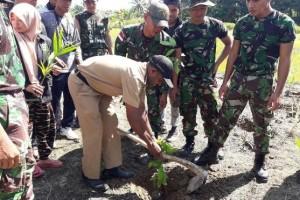 Satgas Yonif 122/TS tanam seribuan anakan pohon di Keerom