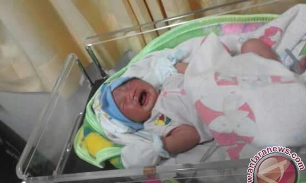 27 bayi di Deiyai meninggal karena sakit