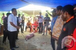 Pemprov Papua serahkan bantuan ternak di Skanto