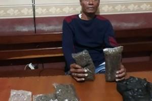 Polres Jayapura kembali tangkap pengedar ganja