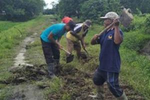 Bhabinkamtibmas Polres Waropenn bantu warga perbaiki jalan