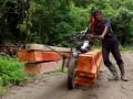 Kayu hasil hutan Papua