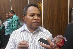 WWF: potensi energi terbarukan Papua belum digali