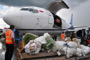 Pemkab Jayawijaya tetapkan HET barang angkutan pesawat kargo