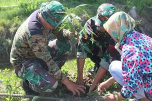 Kodim Merauke tanam 1.000 pohon