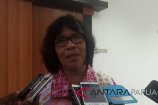 Diskominfo Papua pastikan pembangunan Palapa Ring selesai Desember