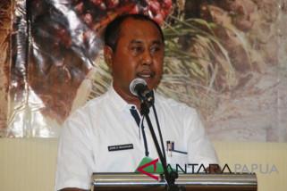 Dinas Perkebunan Papua dorong kabupaten/kota buka areal pembibitan