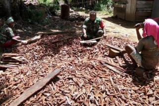Babinsa Koramil Sota bantu warga olah kayu gambir