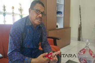 PLN segera jual listrik ke Papua Nugini