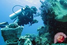 Wagub Sulut Berharap Potensi Laut Sulawesi Diteliti