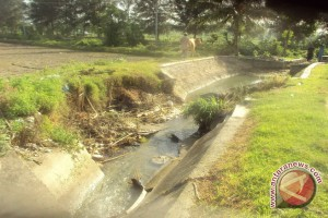Sejumlah Daerah Irigasi Di Sulteng Tutup Sementara