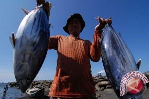 Donggala Genjot Sarana Penangkapan Ikan Untuk Nelayan
