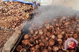 Arang tempurung asal Parigi Moutong diklaim berkualitas ekspor
