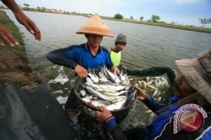 Potensi Laut Indonesia Perlu Digarap Secara Optimal