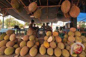 Durian Wakai diminati warga Gorontalo